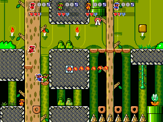 smw_1_8_pic4.png